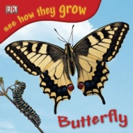 large_see-how-they-grow-butterfly_001